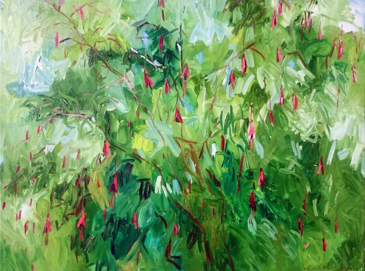 Fuchsia. - Image 0