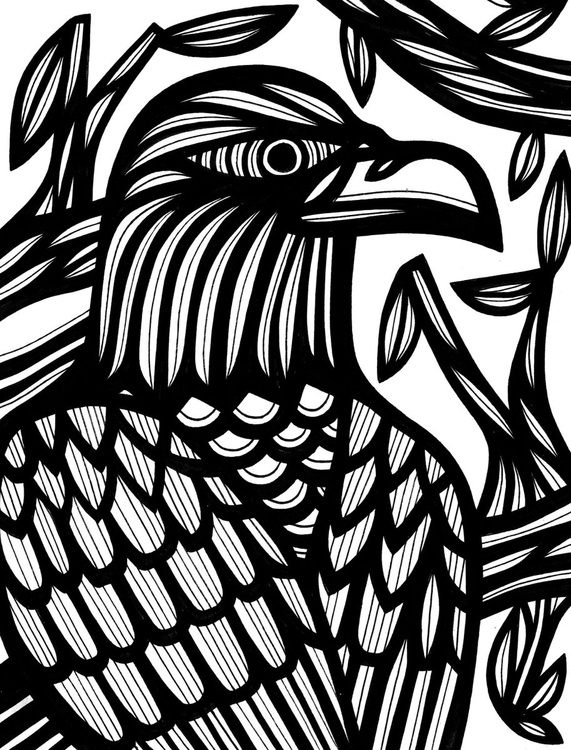 Intense Bird Nature Original Drawing - Image 0