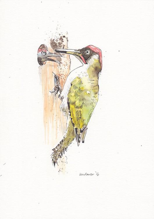 Green Woodpecker, daily Bird #39 - Image 0