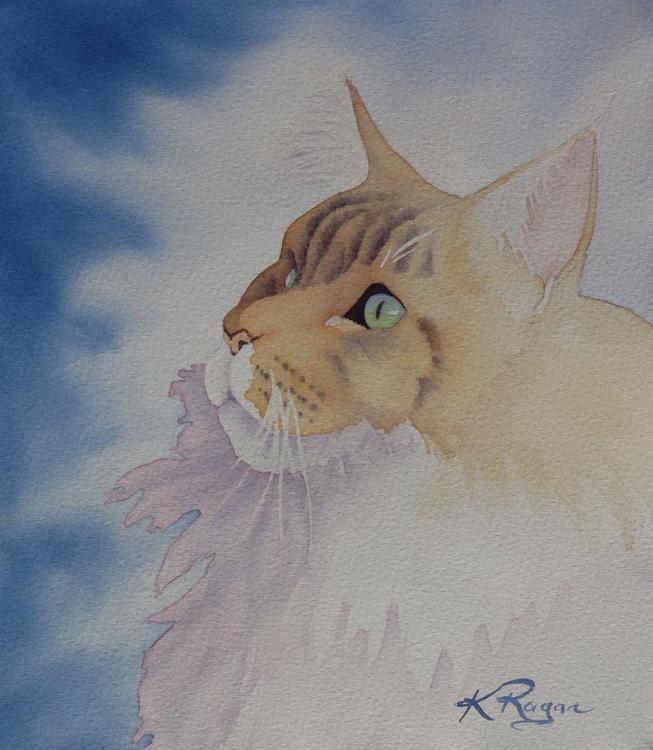 Maine Coon Cat - Image 0