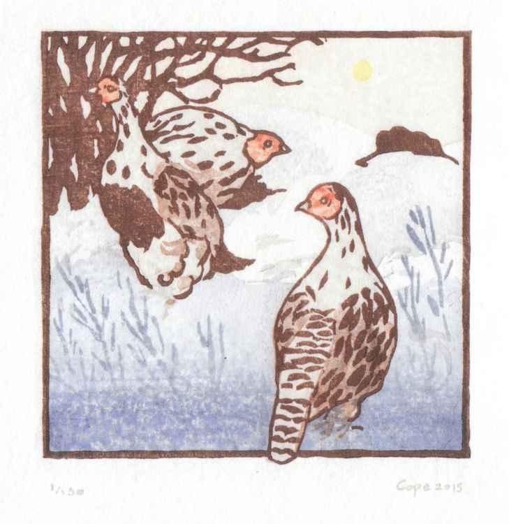 Winter Partridges 1/150