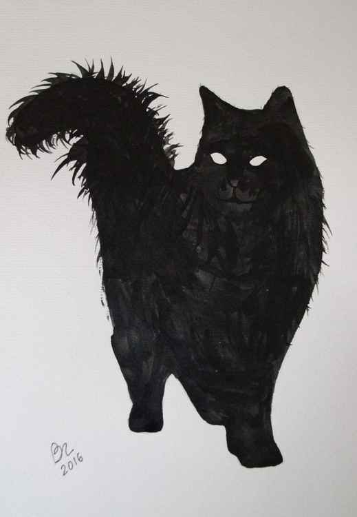 Cat 3 -