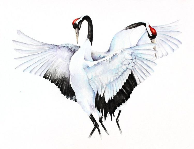 CRANES DANCE  bird, birds, animals, wildlife watercolour painting - Image 0