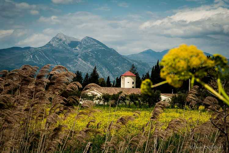 Italian countryside -