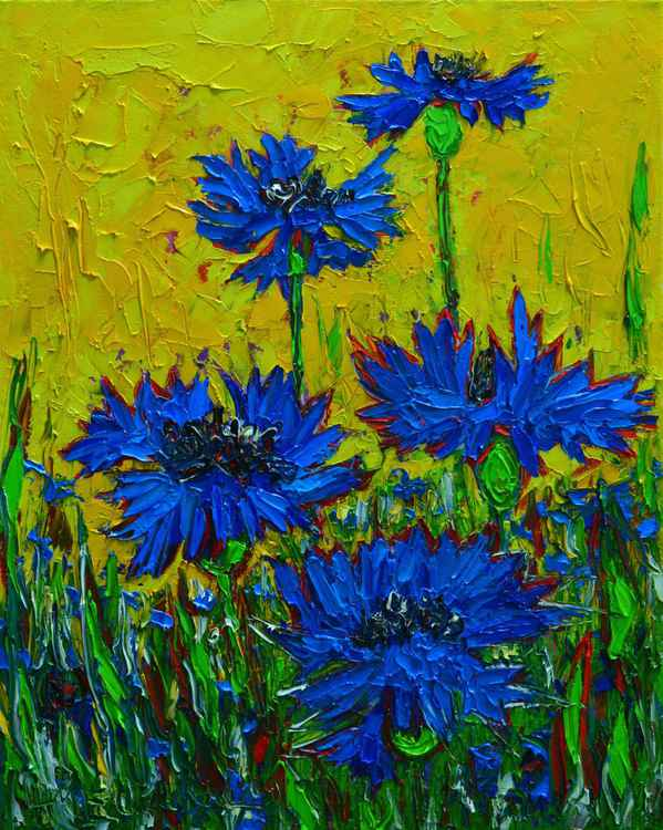 Wild blue cornflowers in sunlight -
