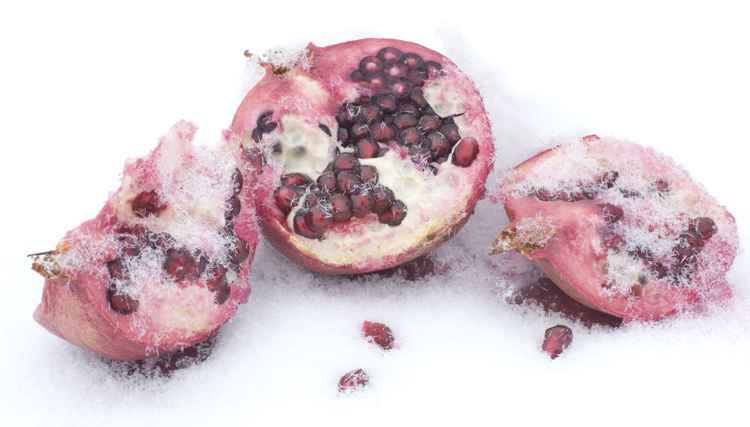 Snowy Pomegranate