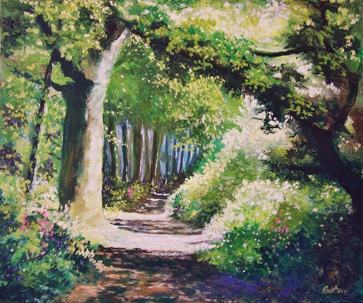 Path into woods 6 - Image 0