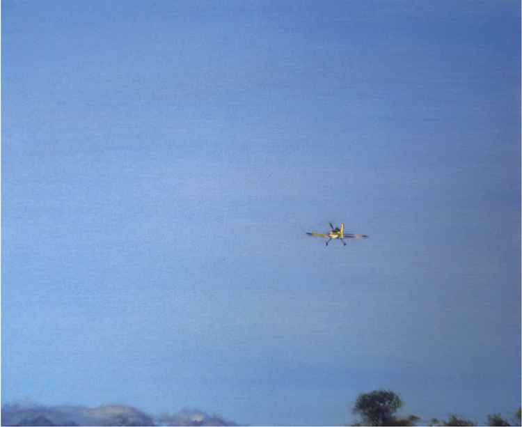 Affect Theory Gliding -