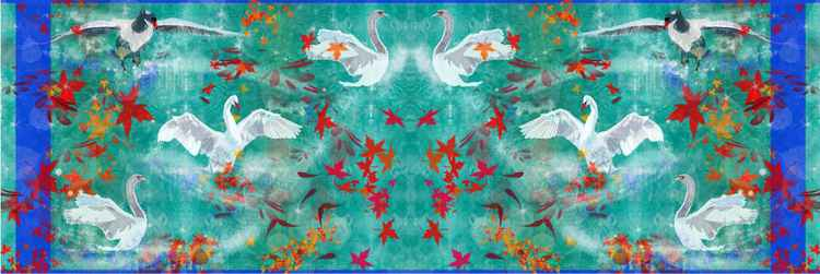 Swans Birds -