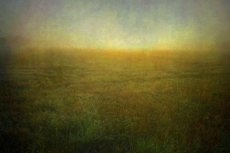 Quiet Moments - Canvas 75x 50 cm - Image 0