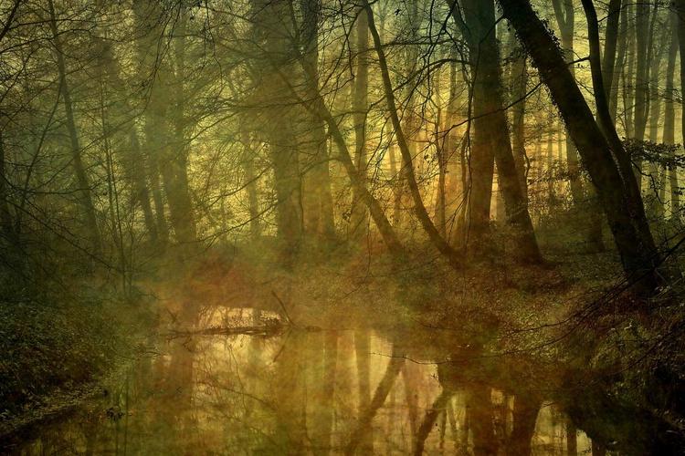 Silence ...  Canvas 90 x 60  cm - Image 0
