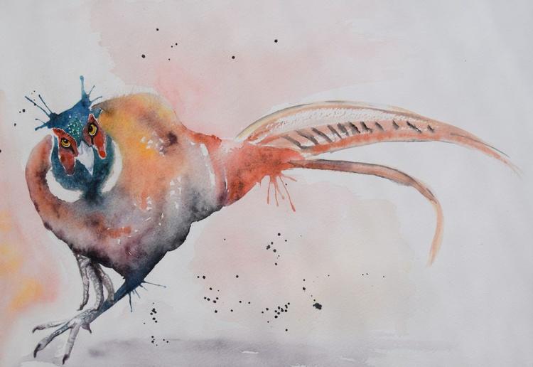 'Fiesty Pheasant' - Image 0