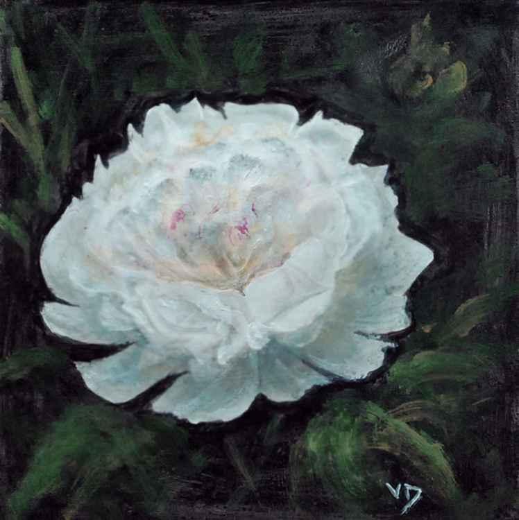 flower4 -