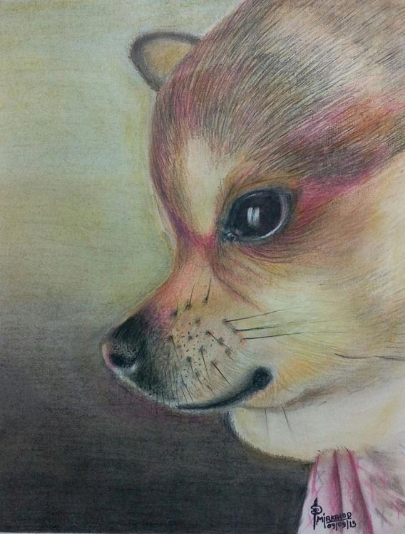 Pippa The Sweet Dog - Image 0