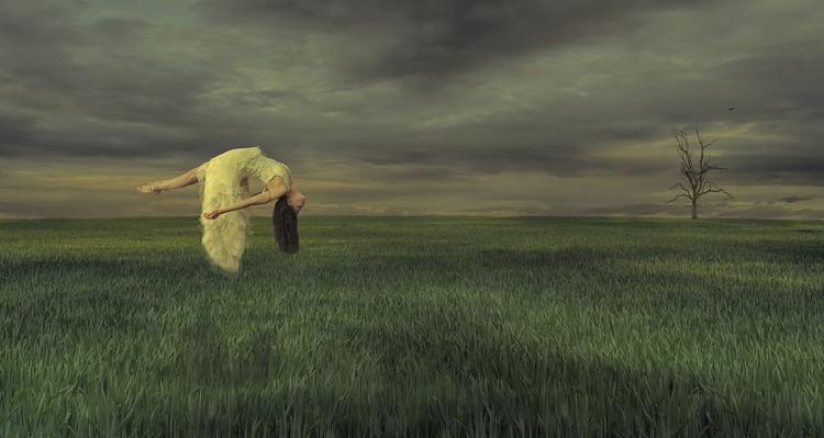 Elysium Dreams - Image 0