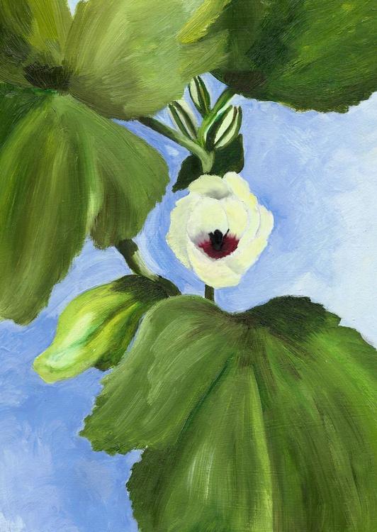 Okra Blossom - Image 0