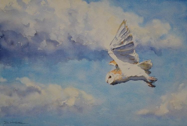 Barn Owl In Flight - Image 0