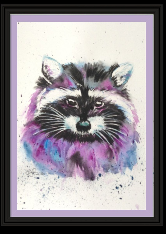 """Bandito"""" the Raccoon 11 X 15 inch watercolour mounted ready to framer - Image 0"""