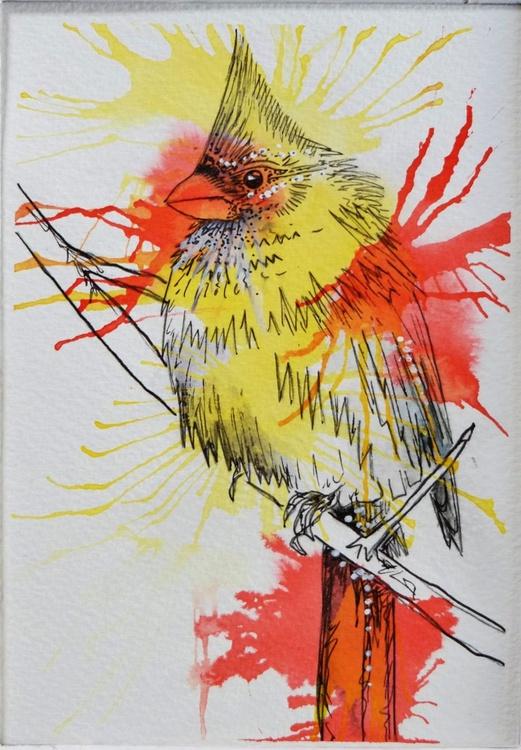 North American Cardinal - Image 0