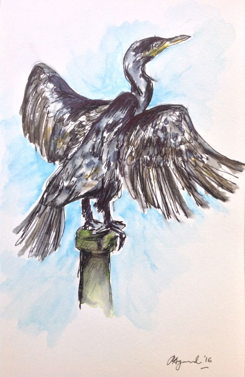 Commanding Cormorant, Ink and Watercolour - Image 0