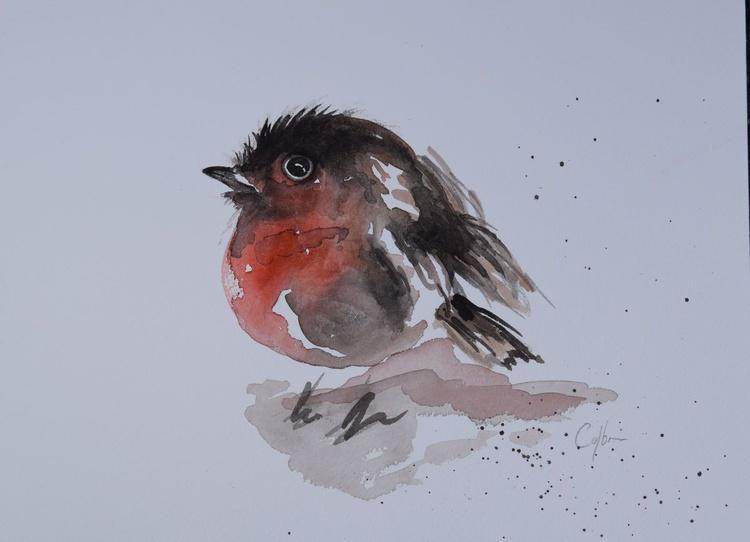 'Puffed up Robin' - Image 0