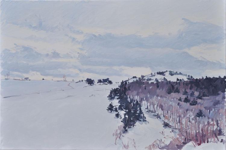 February 9, Massif du Mézenc, snow - Image 0