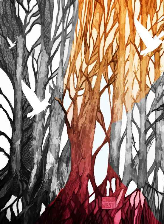 Two Tone Forest -