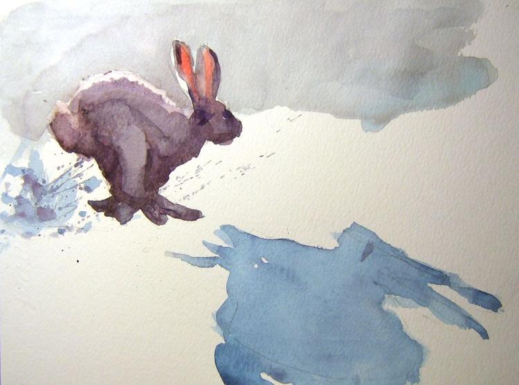 Run, run,rabbit....II - Image 0