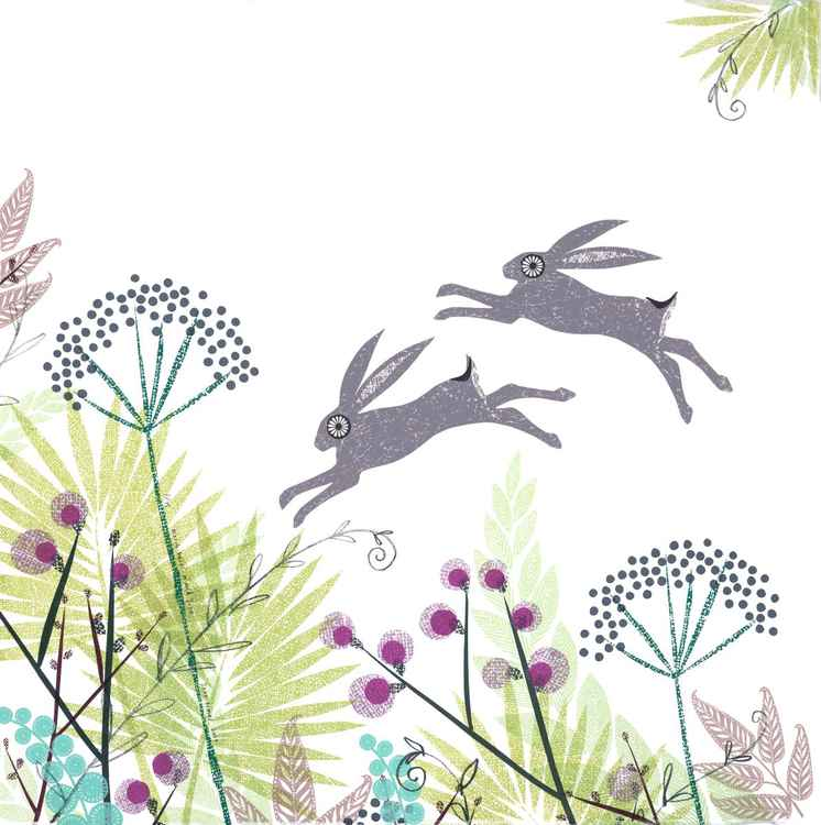 March hares in mid June