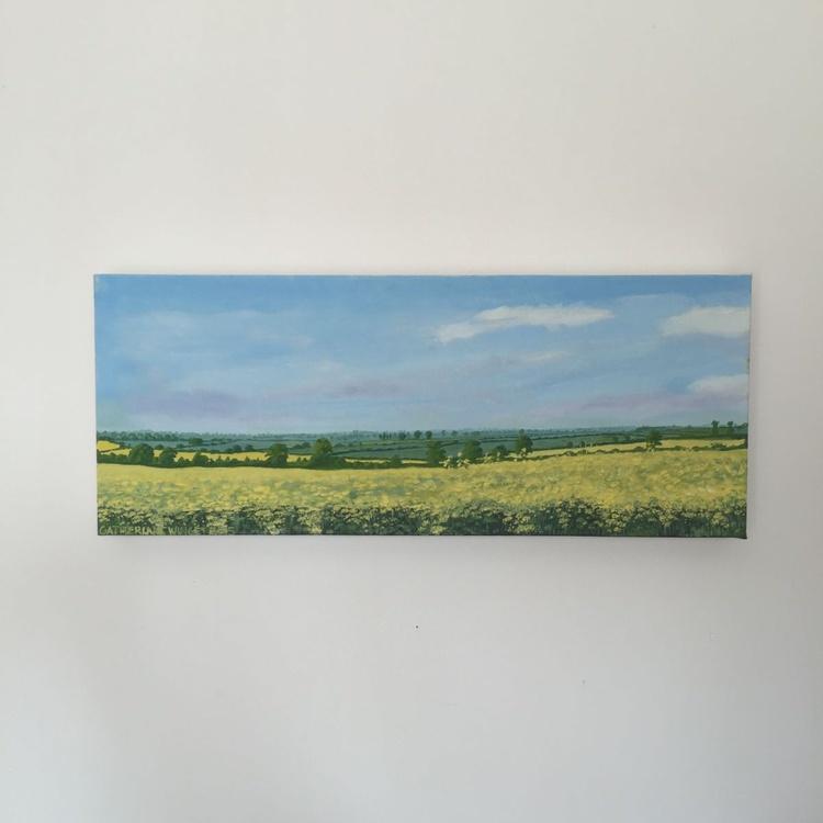 Oilseed Rape at Hillesden 3 - Image 0