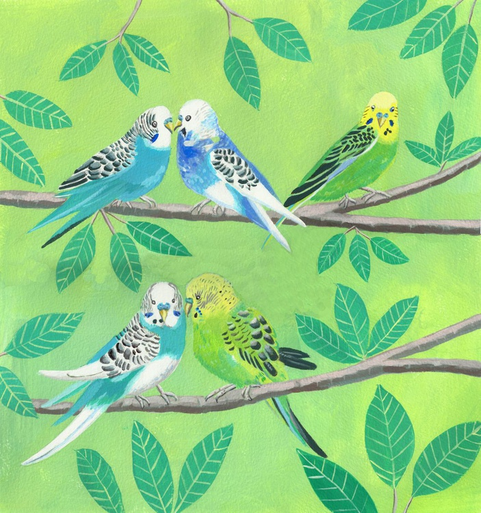 Budgerigars on branches - Image 0