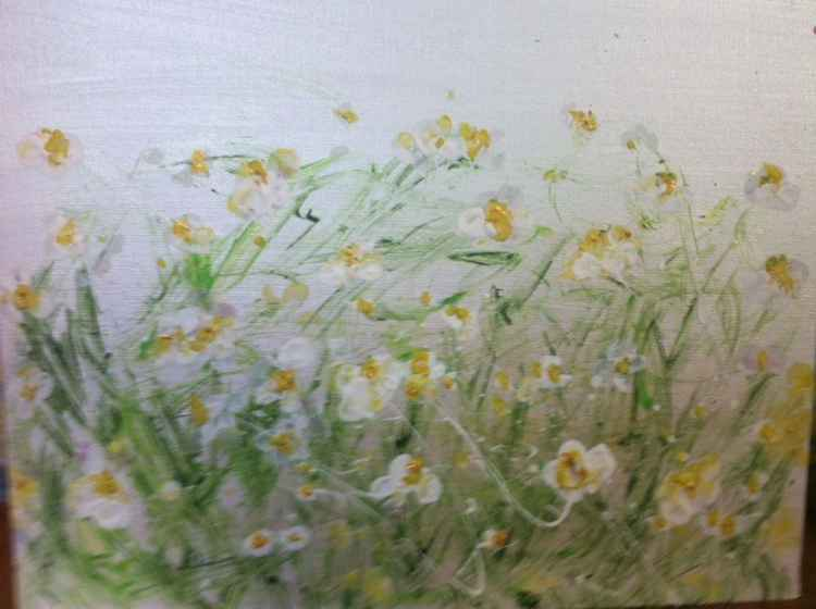 Meadow Daisies -