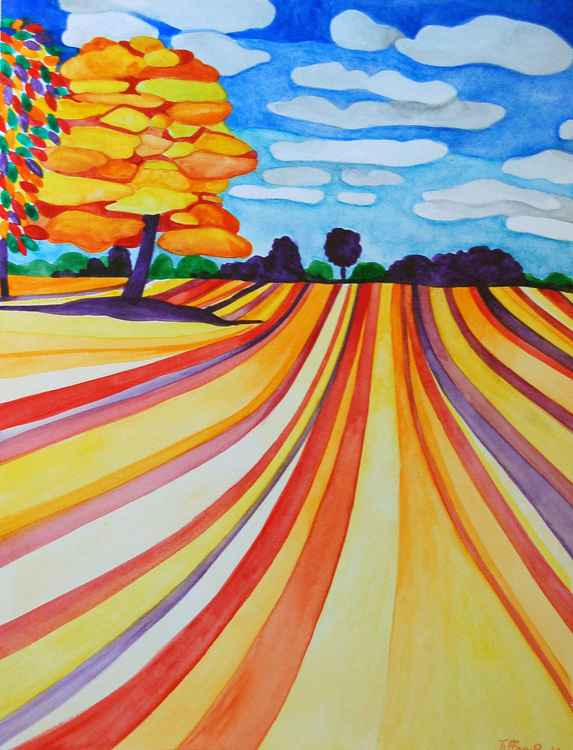 Harvest Colour Field -