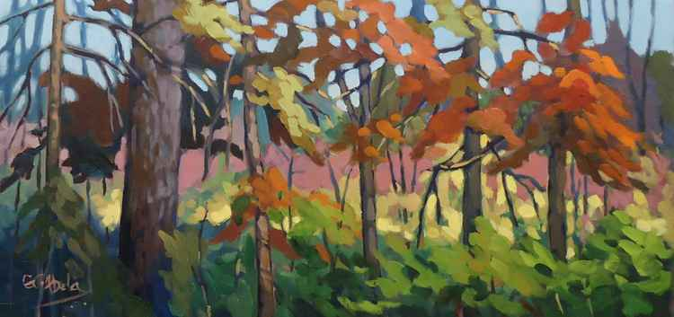 Treetops -