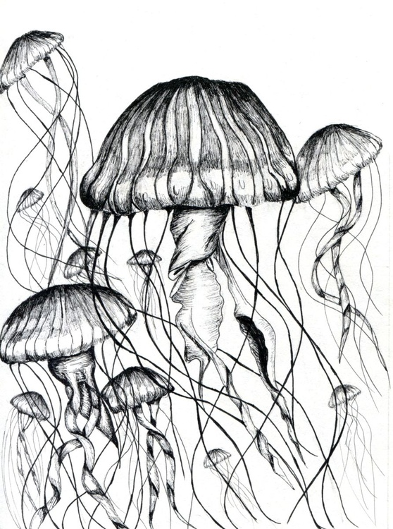 Jellyfish Swarm - Image 0