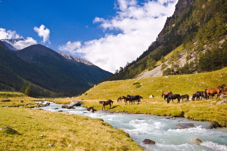 Caucasian landscape - Image 0