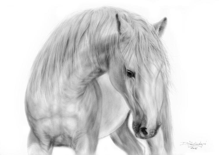 White Stallion - Image 0