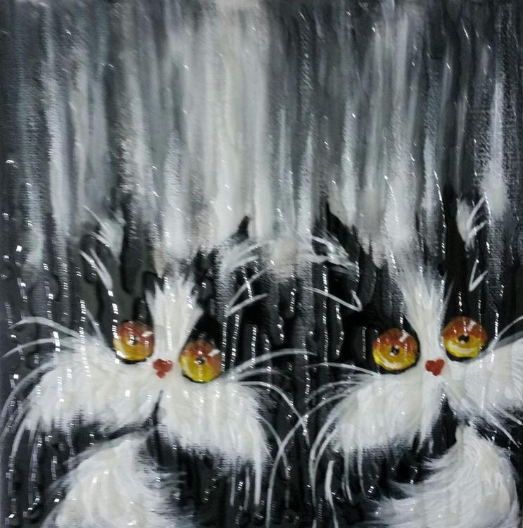 Raining cats - Image 0
