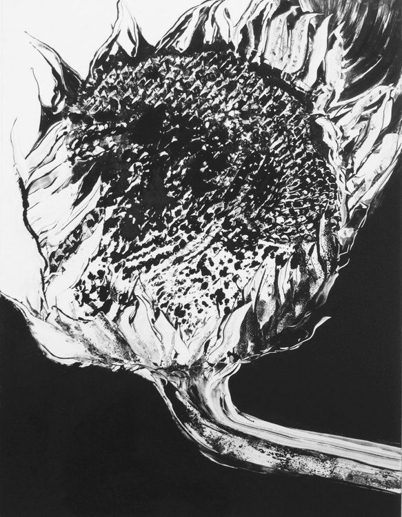 Seed of thought - Image 0