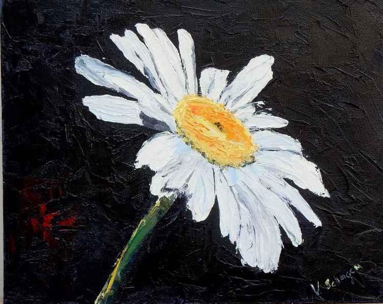 Daisy flower -