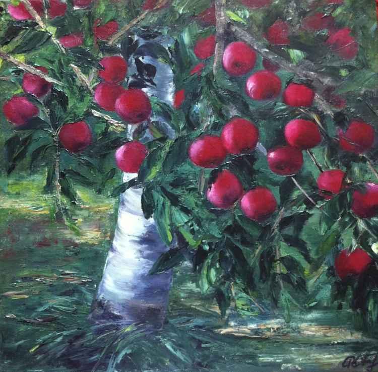 Apple tree -