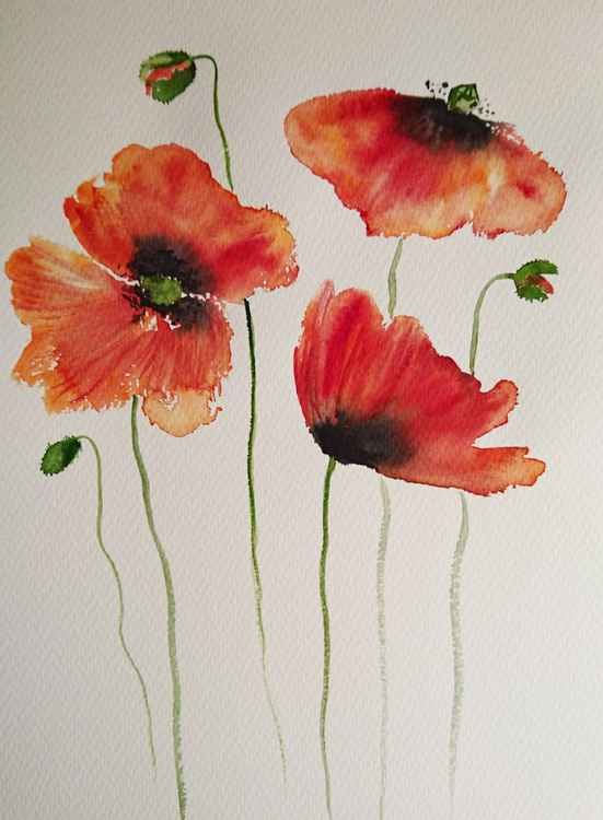 "Poppy flowers two 16"" x 12"" -"