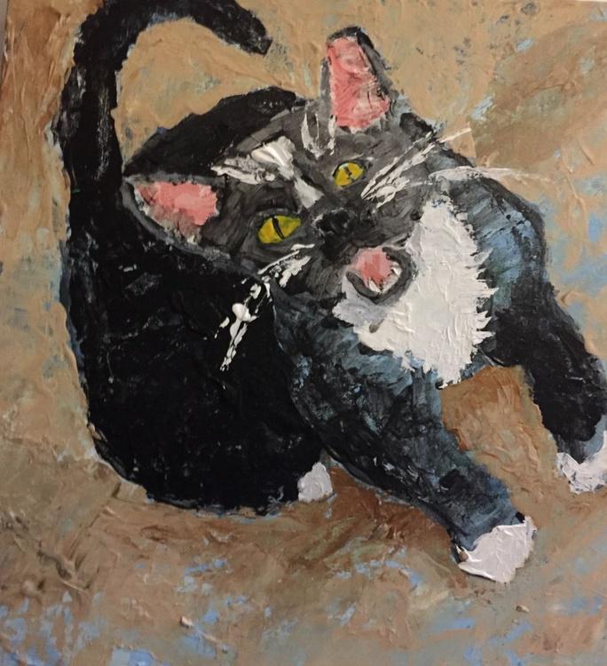 Treats For Kitty - Image 0