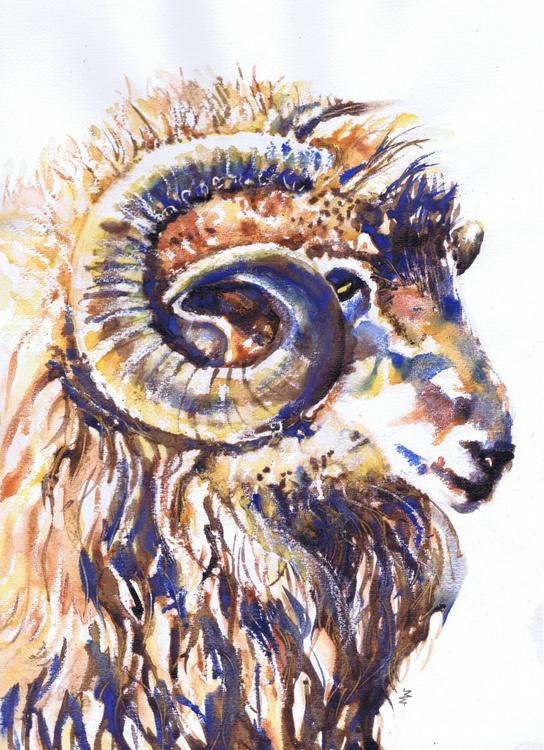 Welsh Ram II - Image 0