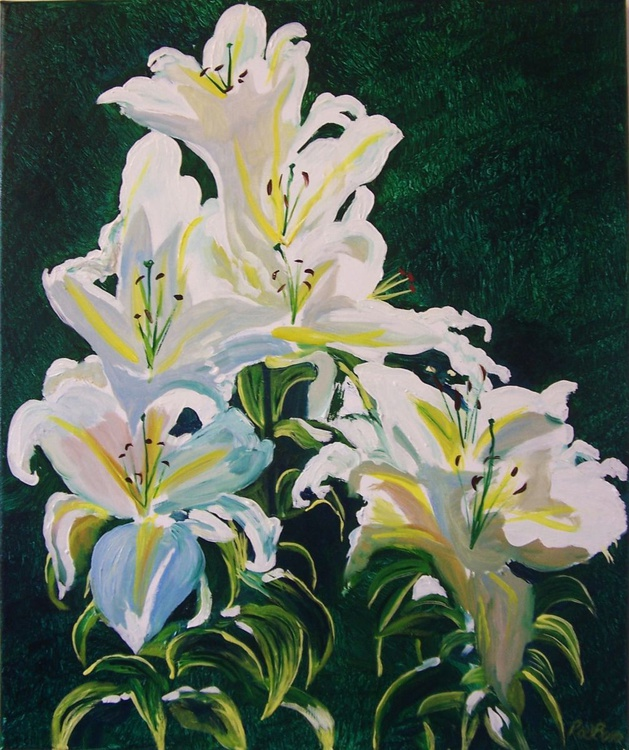 Lilies in the sun - Image 0