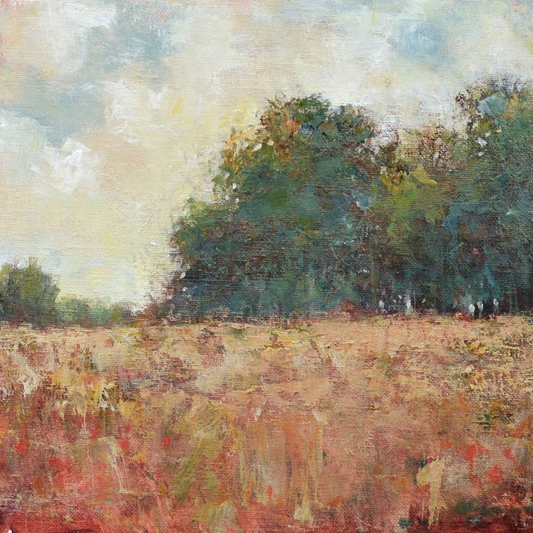 Red Field 12x12 inches - Image 0