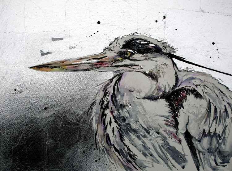 Fishers heron -