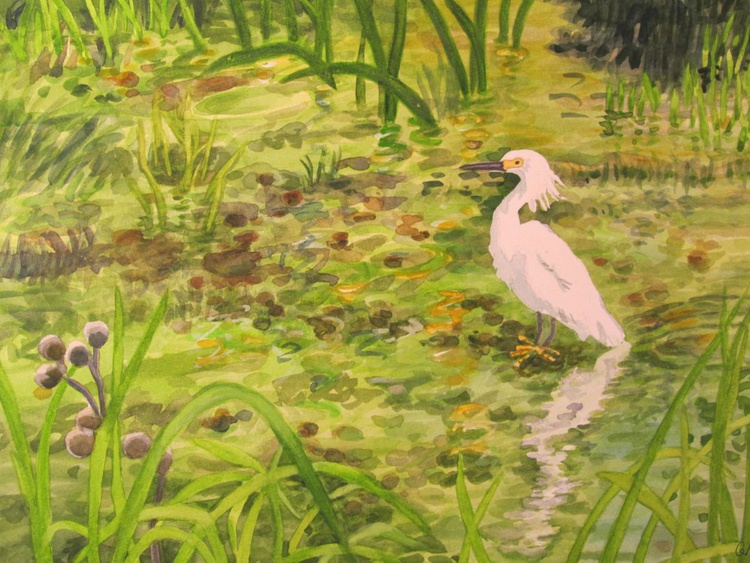 Egret in Creek - Image 0