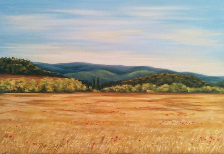 Field of wheat - Image 0
