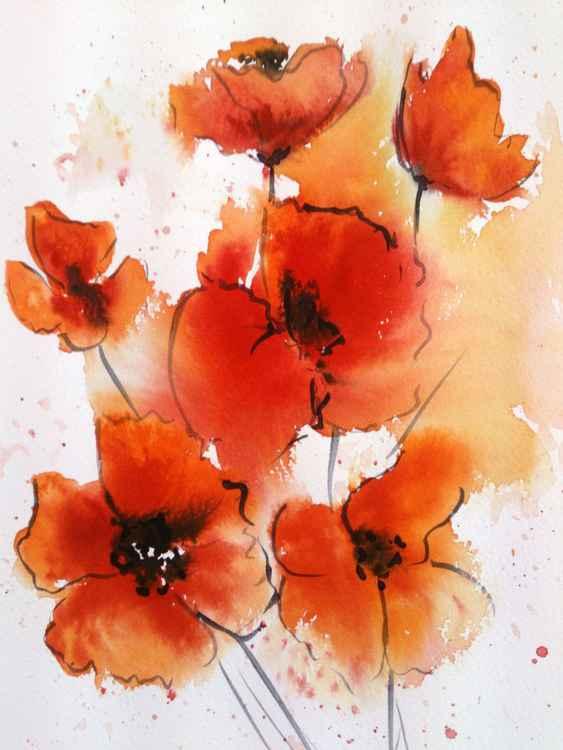 poppies 1 -